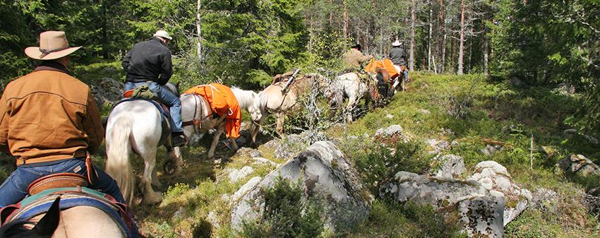Se och göra - Upplev naturen från hästryggen.